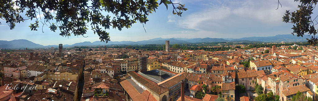 Taste of art - Lucca Panorama